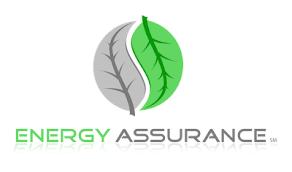 Energy Assurance
